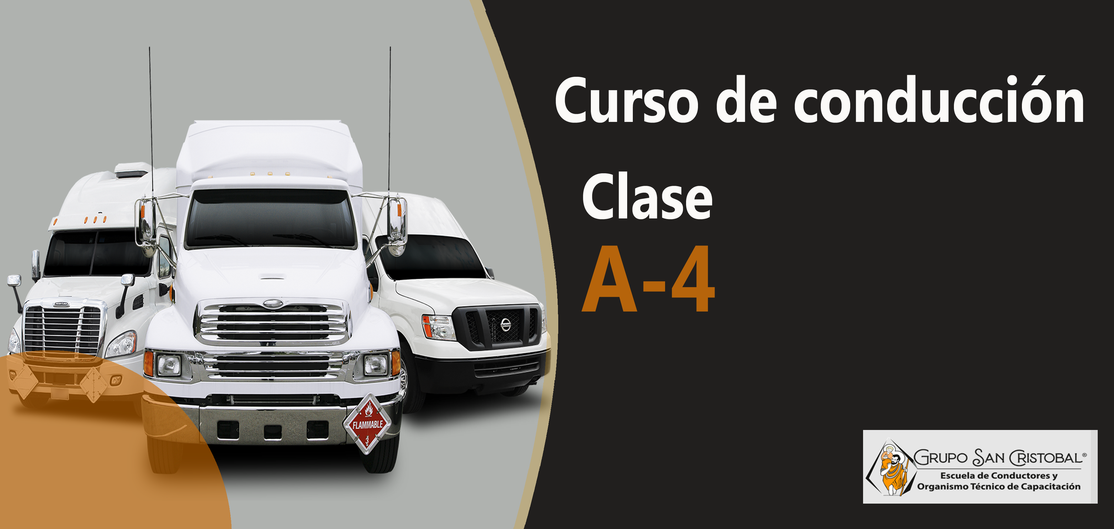 Conducción profesional Clase A-4 Convalidación